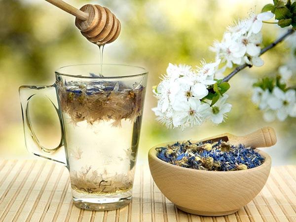 蒲公英玫瑰花茶的功效与禁忌