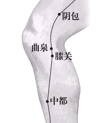 膝关穴——膝关节疼痛就揉膝关穴